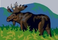 moose of the world